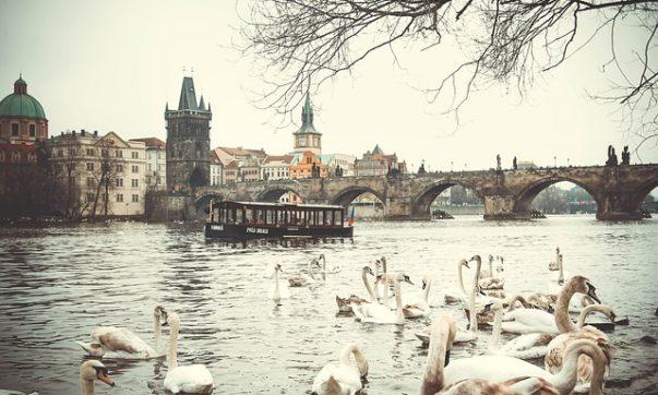 Прага, Кралов мост