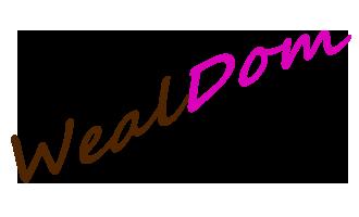 Женский журнал WealDom